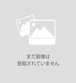 【】 スカジャン  ユニセックス
